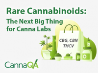 Rare Cannabinoids: The Next Big Thing for Canna Labs